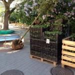 Axelsbergs torg får nya växter