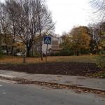 """""""Gör park istället för fler bostäder"""""""