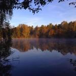 Inför saneringen av Vinterviken: Dykare slår larm om misstänkta gifttunnor