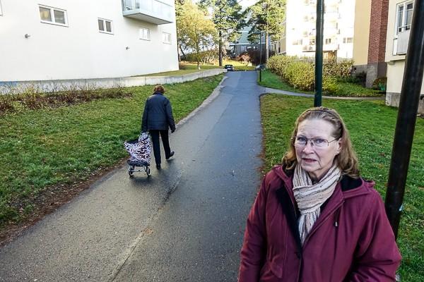 Eva Fruängen (2 of 5)