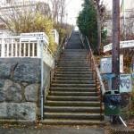 """""""När jag tränar trapplöpning i Jakobs stege funderar jag över Hjalmar Mehr"""""""