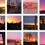 DAGENS FRÅGA: Vilket novembermorgonljus är vackrast?