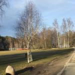 """""""Tyck till om miljön runt Vinterviken"""""""