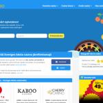 Casino på nätet – Så fungerar det i Sverige!
