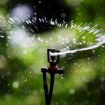 Värmeböljan fortsätter – 6 tips för att spara på vattnet