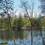 Krönika: När matfriska sommargäster från Lövholmen uppvaktade Årstafrun
