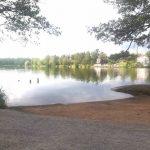 Algblomning i Långsjön – barn magsjuka