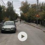 FILM: Skolelever mötte älg på väg till Mälarhöjdens skola