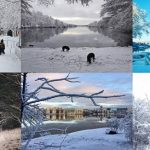 Här är 2018 års bästa vinterbilder