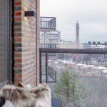 Nya bostäder snart klara på Åsen – med fin utsikt