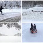 50 bilder: Snöiga Hägersten-Liljeholmen – 3 februari 2019