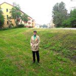 Förslag: Låt stadsdelens gräsmattor bli ängsmark