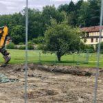 """""""De två finaste träden sparas vid saneringen – underbart"""""""