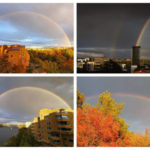 34 fina bilder på de fantastiska regnbågarna