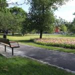 Njut av sommaren i Svandammsparken