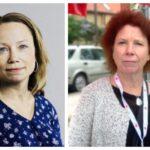 Skarp kritik mot parkskötseln i Hägersten-Liljeholmen i ny revisionsrapport