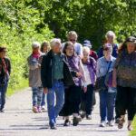 Promenader för äldre bryter isolering