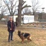 Förslag: Här finns plats för en hundrastgård