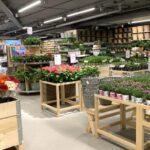 Trädgårdskedja öppnar ny butik på andra sidan Liljeholmsbron