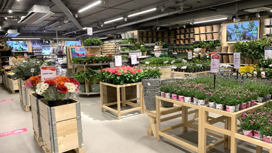 blommor och växter i butik
