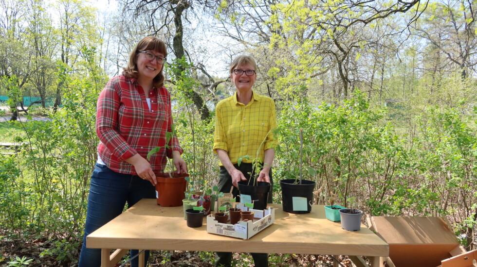 två kvinnor med plantor