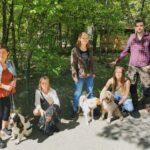 Hundägare upprörda över falska lappar i park – nu planeras Hundens dag