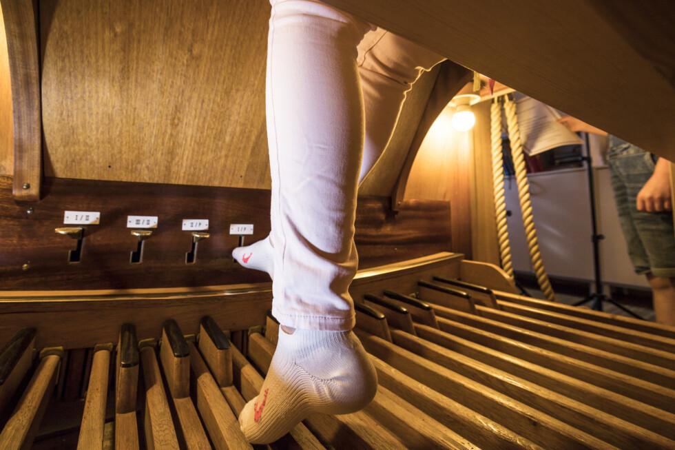 ben orgel