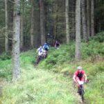 Cykling blir tillåten i Sätraskogen, Älvsjöskogen och Årstaskogen