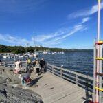 Förslag: Så kan säkerheten öka vid populära badplatsen Sjöberget
