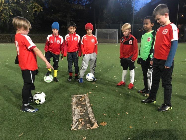 fotbollsplan med unga fotbollsspelare